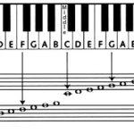 ۸ نکته مهم و اصولی در یادگیری سطح مقدماتی پیانو