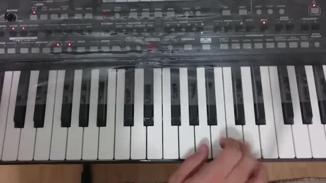 نوازندگی ارگ 1