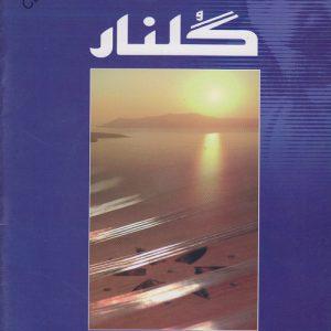 کتاب پرطرفدار سی قطعه ترانه برای سنتور (گلنار از پشنگ کامکار)